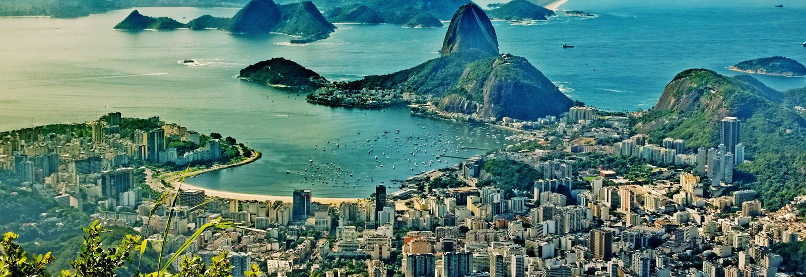 Travel Vaccines and Advice for Brazil   Passport Health