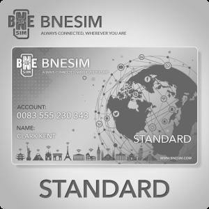BNESIM - Enterprise Standard